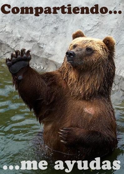 Oso grizzli » OSOPEDIA